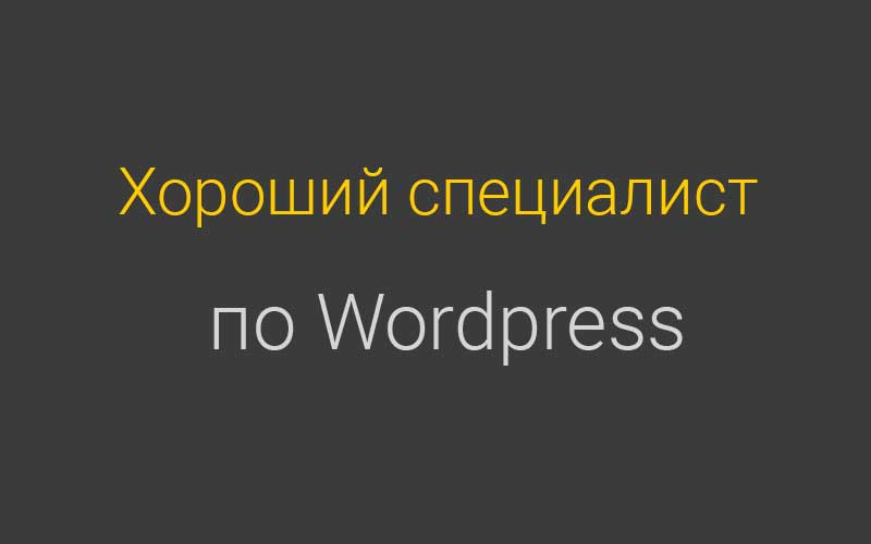 Хороший Wordpress специалист для сайта