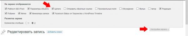 "Добавить поле ""Цитата"" в админку WordPress - настройка экрана"