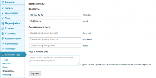 Страница настроек для WordPress шаблона