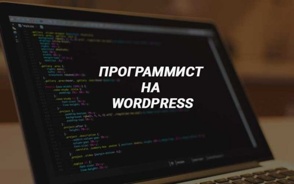 Нужен программист на Wordpress?